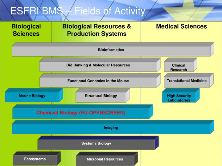 ESFRI BMS – Fields of Activity