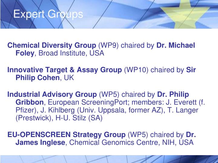 Expert Groups