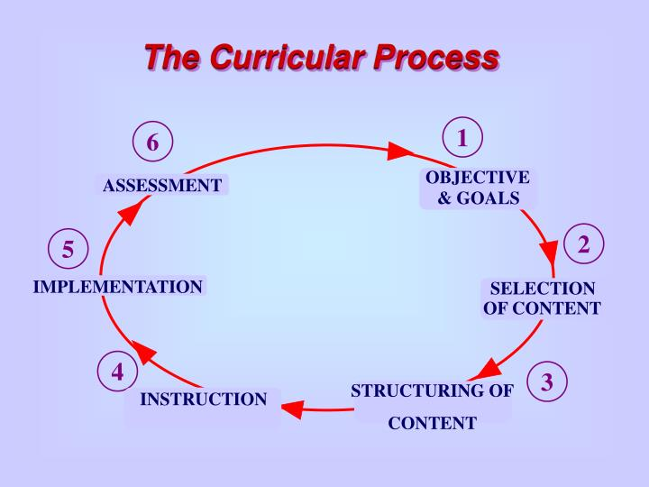The curricular process