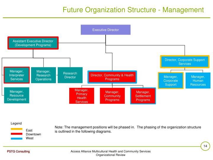 Future Organization Structure - Management