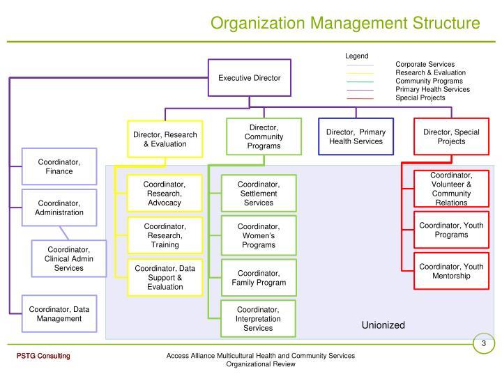 Organization Management Structure