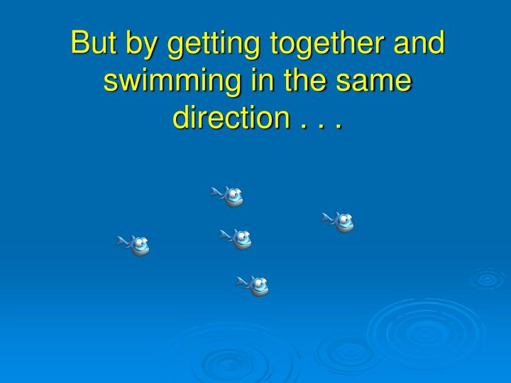But by getting together and swimming in the same direction . . .