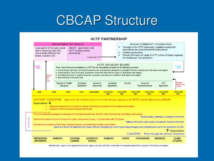 CBCAP Structure