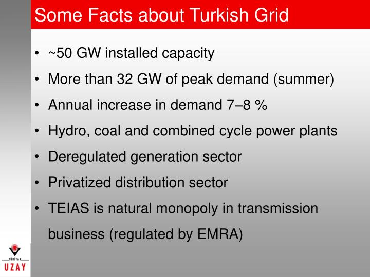 Some Facts about Turkish Grid