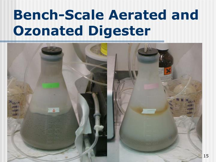 Bench-Scale Aerated and Ozonated Digester