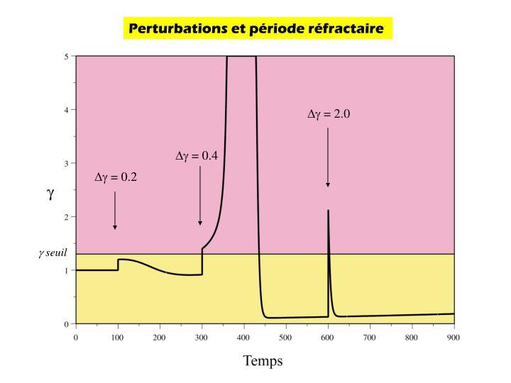 Perturbations et période réfractaire