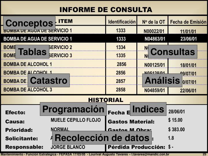 INFORME DE CONSULTA