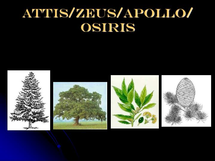 Attis/zeus/apollo/ osiris