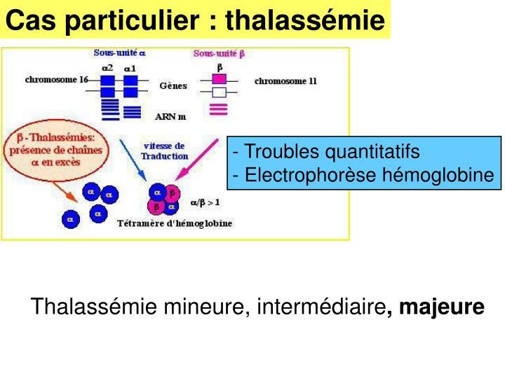 Cas particulier : thalassémie