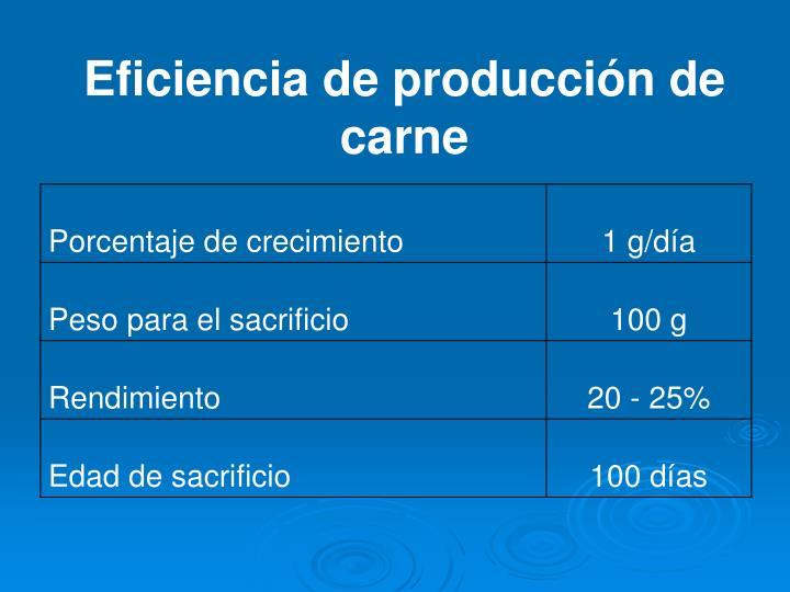 Eficiencia de producción de carne