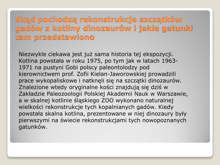 Niezwykle ciekawa jest już sama historia tej ekspozycji. Kotlina powstała w roku 1975, po tym jakw latach 1963-1971 na pustyni Gobi polscy paleontolodzy pod kierownictwem prof. Zofii Kielan-Jaworowskiej prowadzili prace wykopaliskowe i natknęli się na szczątki dinozaurów. Znalezione wtedy oryginalne kościznajdują się dziś w Zakładzie Paleozoologii Polskiej Akademii Nauk w Warszawie, a wskalnej kotlinie śląskiego ZOO wykonanonaturalnej wielkości rekonstrukcje tych kopalnianych gadów.Kiedy powstała skalna kotlina, prezentowane w niej dinozaury były pierwszymi na świecie rekonstrukcjami tych nowopoznanych gatunków.