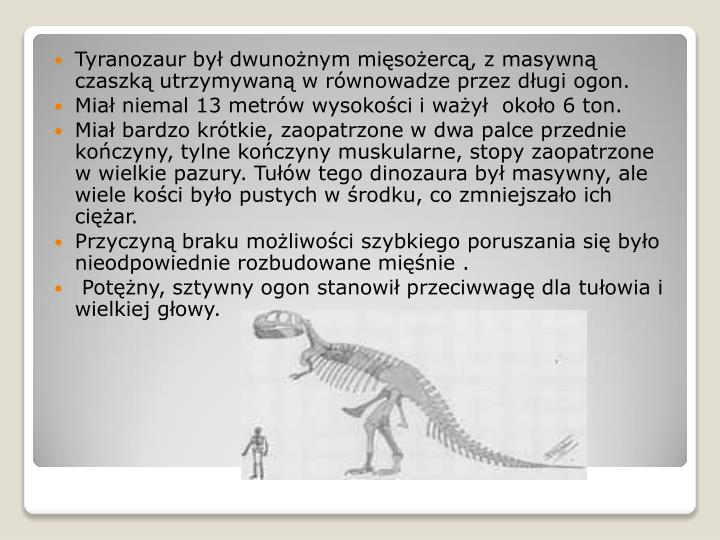 Tyranozaur był dwunożnym mięsożercą, z masywną czaszką utrzymywaną w równowadze przez długi ogon.