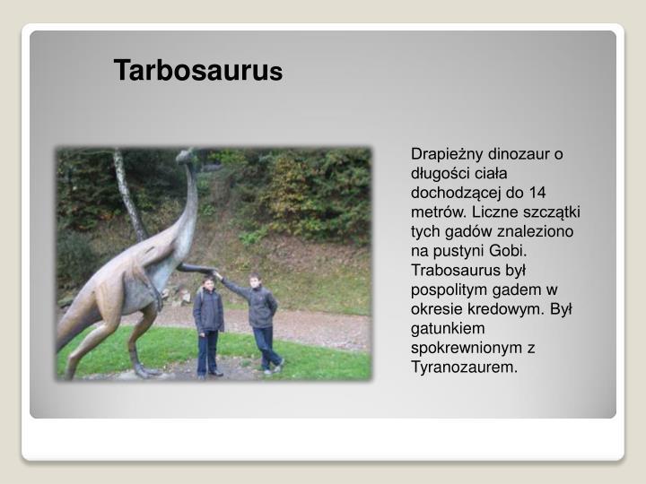 Tarbosauru