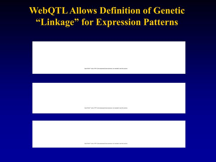 "WebQTL Allows Definition of Genetic ""Linkage"" for Expression Patterns"
