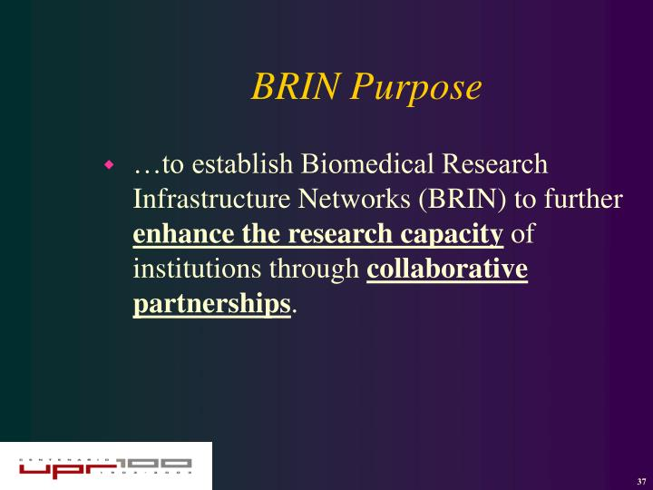 BRIN Purpose