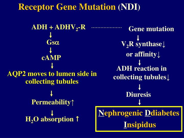 Receptor Gene Mutation