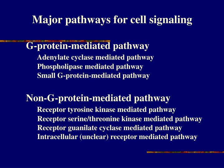 Major pathways for cell signaling