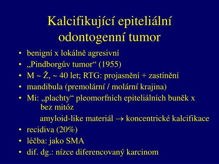 Kalcifikující epiteliální odontogenní tumor