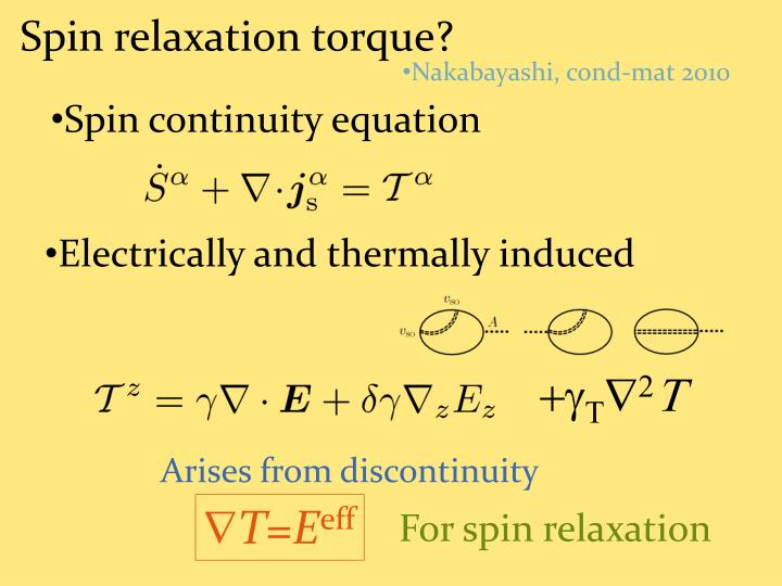 Spin relaxation torque?