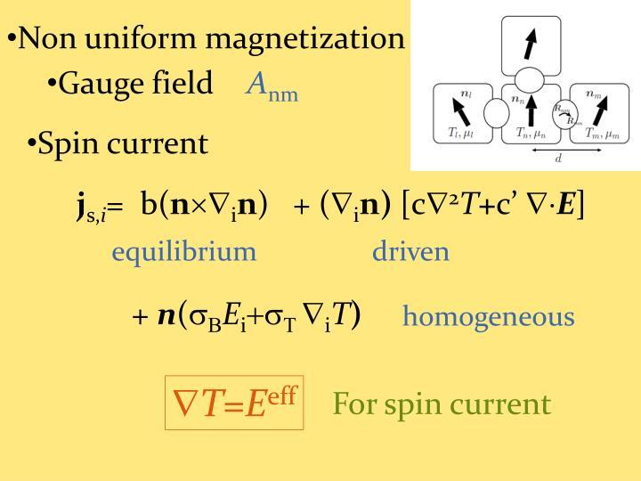 Non uniform magnetization