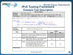 ipv6 testing framework example test description
