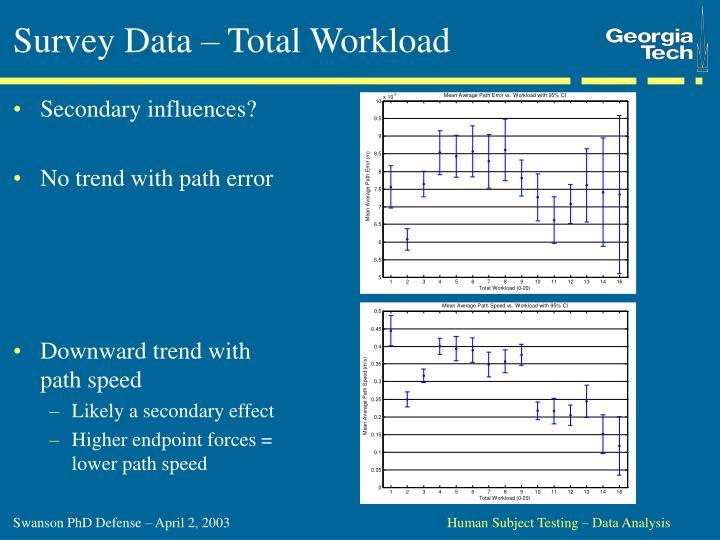 Survey Data – Total Workload