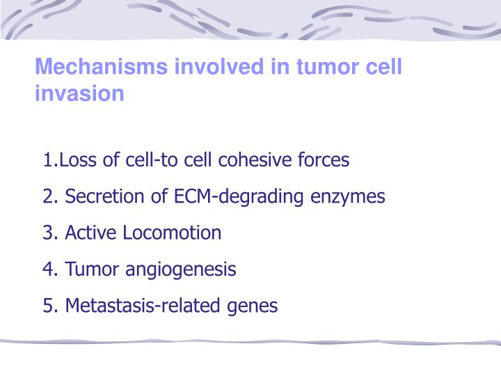 Mechanisms involved in tumor cell invasion