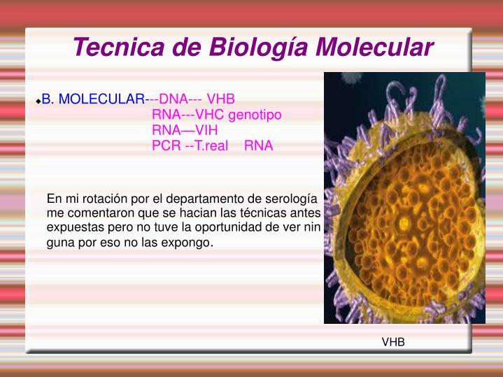 Tecnica de Biología Molecular