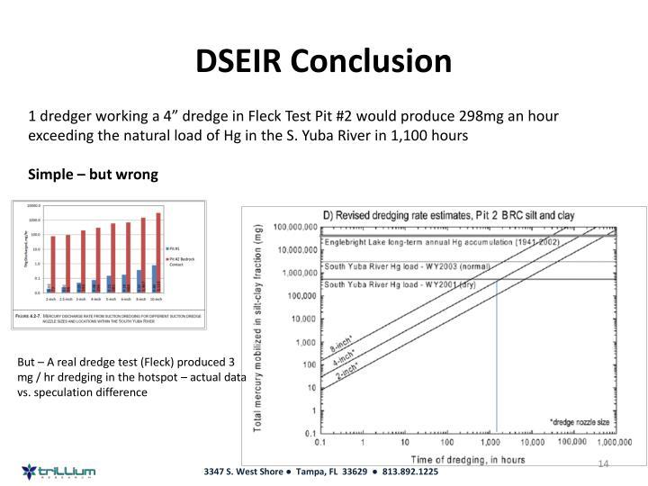 DSEIR Conclusion