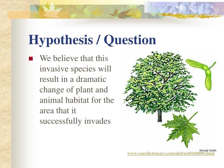 Hypothesis / Question