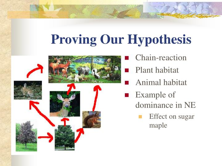 Proving Our Hypothesis