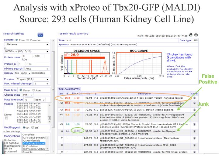 Analysis with xProteo of Tbx20-GFP (MALDI)