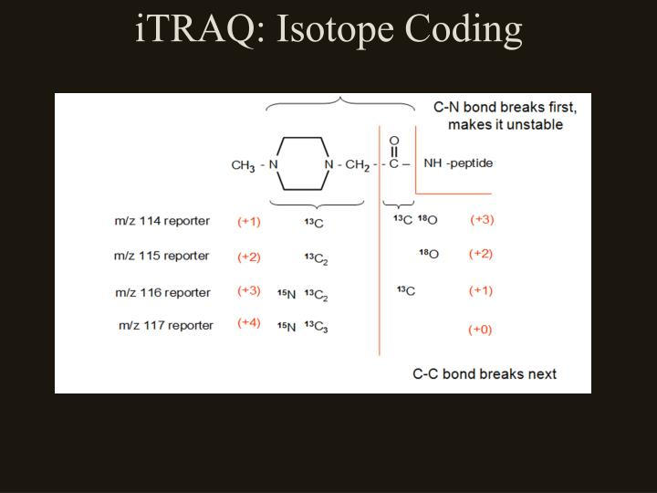 iTRAQ: Isotope Coding