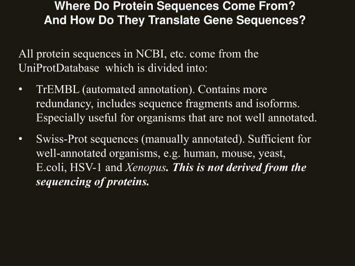 Where Do Protein Sequences Come From?