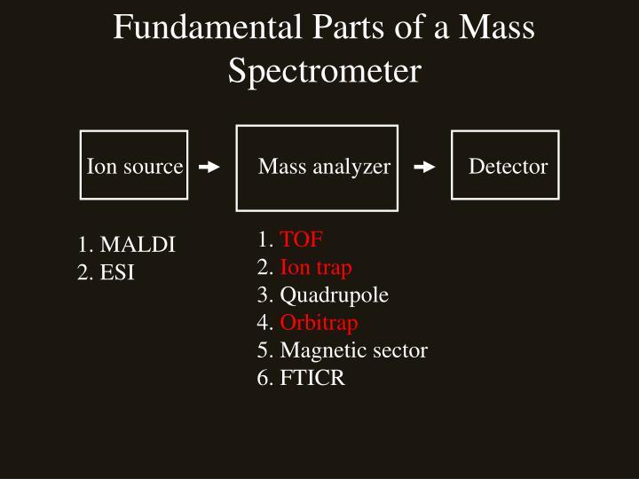 Fundamental Parts of a Mass Spectrometer