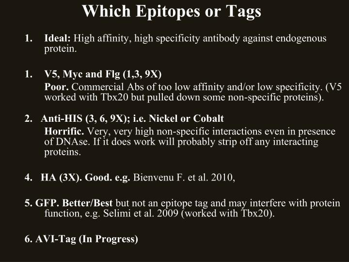 Which Epitopes or Tags