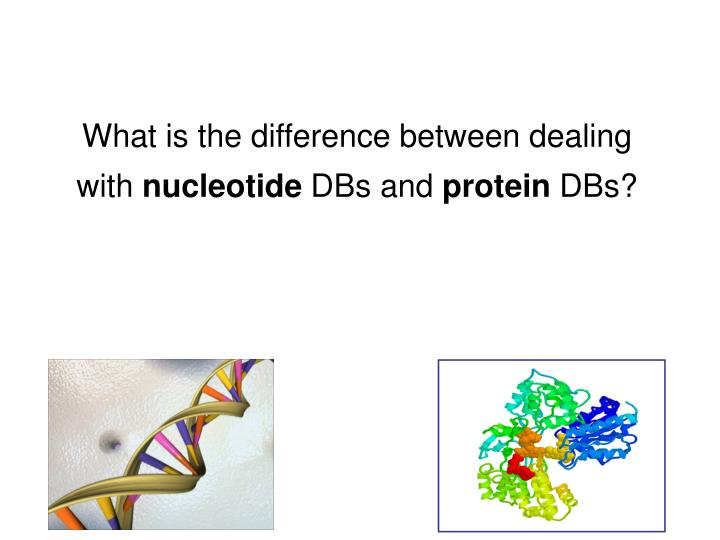 What is the difference between dealing with nucleotide dbs and protein dbs