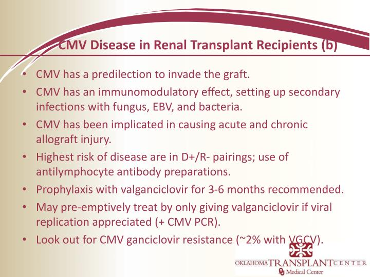 CMV Disease in Renal Transplant Recipients (b)