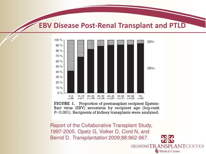 EBV Disease Post-Renal Transplant and PTLD