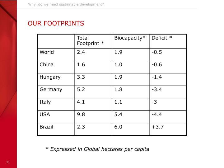 Why  do we need sustainable development?