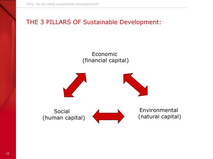 Why  do we need sustainable development?
