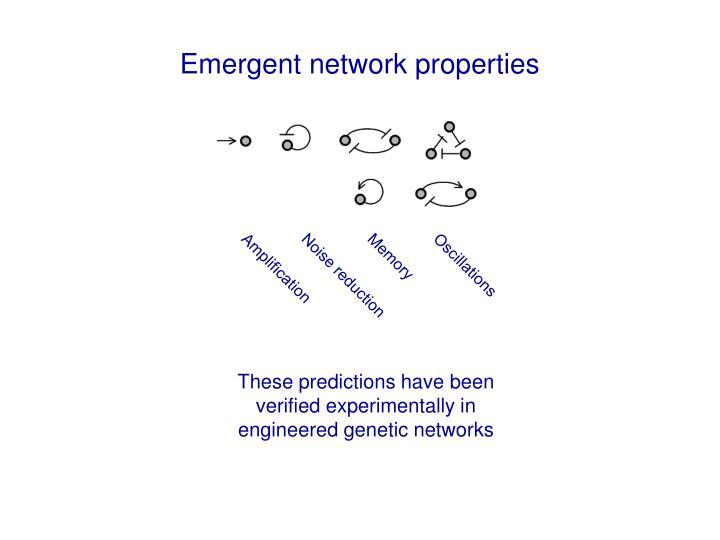 Emergent network properties