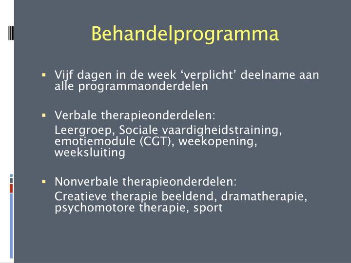 Behandelprogramma