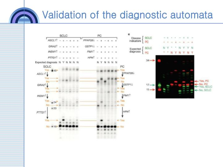 Validation of the diagnostic automata