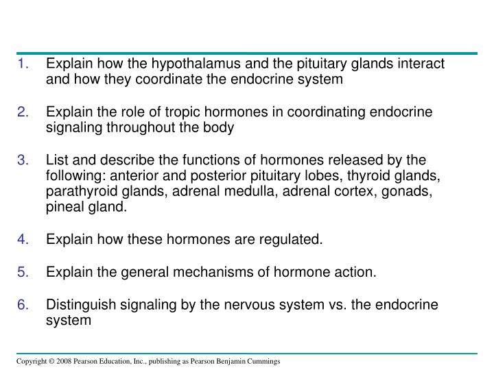 Explain how the hypothalamus and the pituitary glands interact and how they coordinate the endocrine system