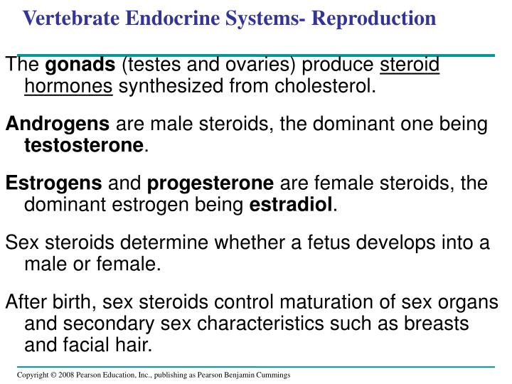 Vertebrate Endocrine Systems- Reproduction