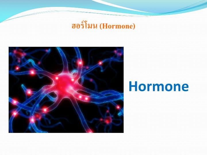 ฮอร์โมน (