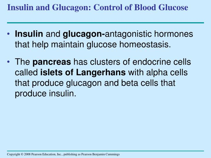 Insulin and Glucagon: Control of Blood Glucose