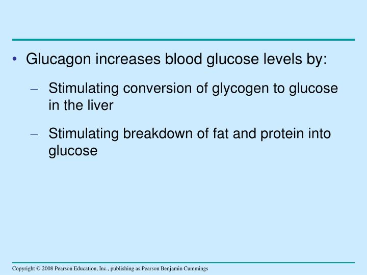 Glucagon increases blood glucose levels by: