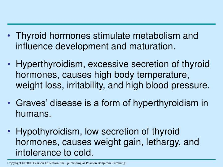 Thyroid hormones stimulate metabolism and influence development and maturation.